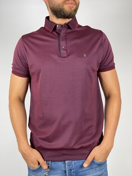 men-slim-polo-shirt-with-thin-cloth-for-summer-maroon-navy-and-beige-colors